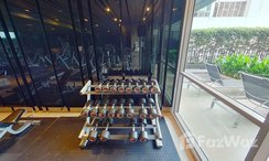 Photos 1 of the Communal Gym at Quattro By Sansiri