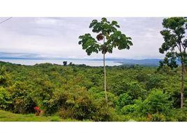 N/A Terreno (Parcela) en venta en , Puntarenas El Mango, Pavones, Puntarenas