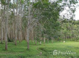 N/A Land for sale in Chalong, Phuket LAND FOR SALE SOI YOT SANE 1 - 14 Rai
