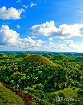 Property for rent inBohol, Central Visayas