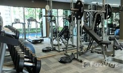 Photos 1 of the Communal Gym at Noble Refine
