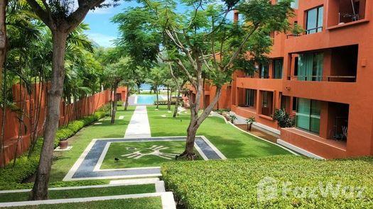 Photos 1 of the Communal Garden Area at Las Tortugas Condo