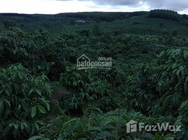 N/A Land for sale in Ngok Wang, Kon Tum Chính chủ cần bán gấp đất rẫy cà phê siêu đẹp tại Đăk Hà, Kontum. Liên hệ: +66 (0) 2 508 8780