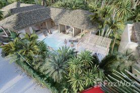 Naturalia Villas Immobilien Bauprojekt in Surat Thani