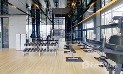 Photos 1 of the Communal Gym at Siamese Exclusive Sukhumvit 31