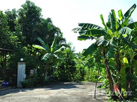 2 Bedrooms House for sale in San Pu Loei, Chiang Mai 2 Bedroom 2 Bath Upscale Suburban Home