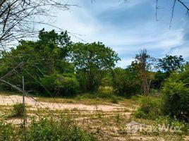 N/A Land for sale in Cha-Am, Phetchaburi 6 Rai Sea View Land for Sale in Cha Am
