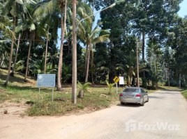 N/A Property for sale in Maret, Koh Samui Land for Sale in Lamai, Koh Samui