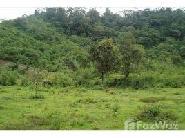 Земельный участок, N/A на продажу в , Puntarenas Large farm off grid.In Rio Claro, Puntarenas, Rio Claro, Puntarenas