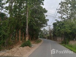 N/A Land for sale in Pa Pong, Chiang Mai Land in Moo Baan Duang Dee