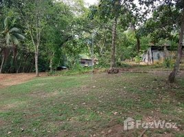 Puntarenas Dominicalito, Puntarenas, Address available on request N/A 土地 售
