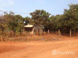 N/A Land for sale in Chu Se, Gia Lai Bán gấp 5 mẫu đất vườn (tiêu, điều, cafe, bơ), đang thu hoạch, SHR-LH +66 (0) 2 508 8780 Vân (chính chủ)