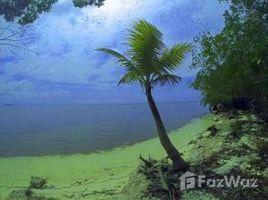 N/A Grundstück zu verkaufen in , Bay Islands Over 2800 ft of beachfront, Utila, Islas de la Bahia