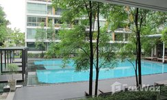 Photos 1 of the 游泳池 at Ficus Lane