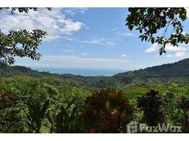 Puntarenas Dominical 2 卧室 屋 售