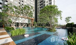 Photos 2 of the Communal Pool at The Trust BTS Erawan