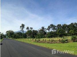 Limon Quinta multipropósito en ruta de gran afluencia: Mountain Home Construction Site For Sale in San Isi, San Isidro, Limón N/A 土地 售