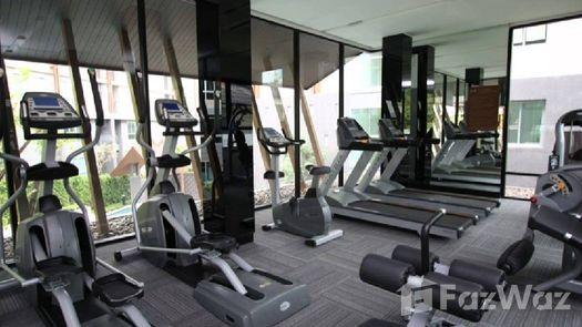 Photos 2 of the Communal Gym at Dcondo Campus Resort Chiang-Mai