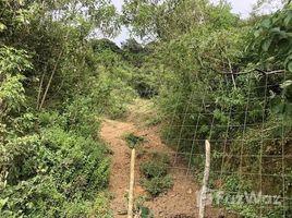 San Jose Se vende finca en Desamparados: Countryside Agricultural Land For Sale in El Llano, El Llano, San José N/A 土地 售