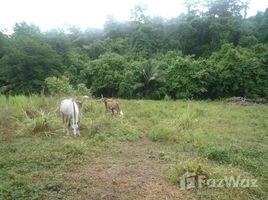 Puntarenas Lot in Matapalo, Quepos (Across the Costanera Highway), Matapalo, Puntarenas N/A 土地 售