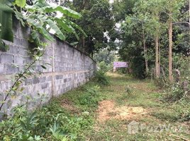 N/A Property for sale in Sai Mun, Ubon Ratchathani Land For Sale Phibun Mangsahan