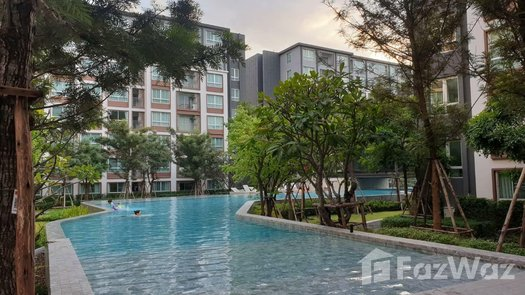 Photos 1 of the Communal Pool at D Condo Ping