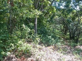 N/A Property for sale in Kaeb, Kep Land 2216 Sqm for Sale in Kaep