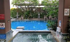 Photos 2 of the Communal Pool at Circle Condominium