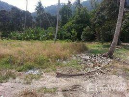槟城 Pulau Betong 182 Rai Land in the Center of Penang N/A 土地 售