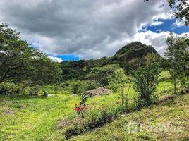 N/A Terreno (Parcela) en venta en Vilcabamba (Victoria), Loja Developers dream, Vilcabamba, Loja