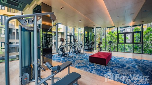 Photos 1 of the Communal Gym at THE BASE Central Phuket