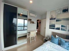 2 Bedrooms Condo for rent in Suan Luang, Bangkok The Tree Sukhumvit 71-Ekamai