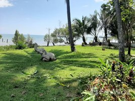 达叻 象岛 Land for sale KohChang N/A 土地 售