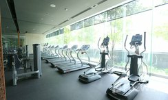 Photos 1 of the Communal Gym at Hyde Sukhumvit 13