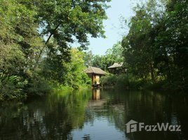 1 Bedroom House for rent in Pa Lan, Chiang Mai Dillenia Home: Secluded Little Lakeside Bungalow + Pavilion