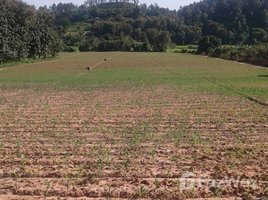 N/A Property for sale in Mae Taeng, Chiang Mai Land For Sale Mountain View