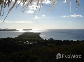 Guanacaste Casa Habibi: Near the Coast Villa For Rent in Playa Potrero, Playa Potrero, Guanacaste 6 卧室 房产 租