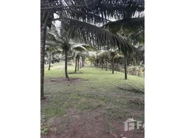 Manabi Cojimies Oceanfront Home Construction Site For Sale in Cojimies, Cojimies, Manabí N/A 房产 售