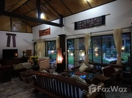 清莱 Pa O Don Chai 4 Bedroom House In 11 Rai Land For Sale In Chiang Rai 4 卧室 屋 租