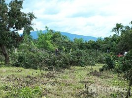 N/A Property for sale in Nam Bo Luang, Chiang Mai Mountain View Land For Sale In Nam Phrae