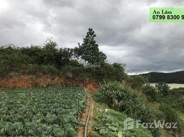 林同省 Ward 3 Cực phẩm 1 héc đất tựa núi mặt tiền đường chính view hồ Dankia N/A 房产 售