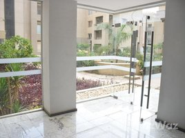 Cairo Amazing Fully Furnished Penthouse In The Village 3 卧室 顶层公寓 租