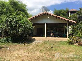 5 Bedrooms Villa for sale in Lipa Noi, Surat Thani Single House In 3 Rai 3 Ngan Land For Sale In Lipa Noi
