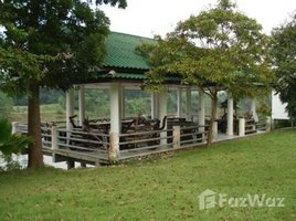 N/A Land for sale in Klon Do, Kanchanaburi Land And Khwae Noi Country Home For Sale
