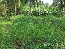 N/A ที่ดิน ขาย ใน ตลิ่งงาม, เกาะสมุย Taling Ngam Beachfront Land For Sale