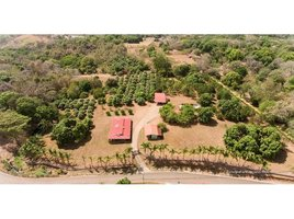 Alajuela Orotina, Alajuela, Address available on request N/A 土地 售