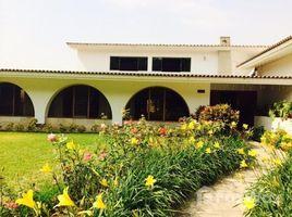 4 Habitaciones Casa en venta en La Molina, Lima Los Cafetos, LIMA, LIMA