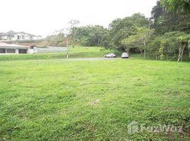 N/A Terrain a vendre à , Alajuela Alfaro, Alajuela, Address available on request