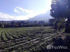 Imbabura Cotacachi San Juan de Iluman, Imbabura, Address available on request N/A 土地 售