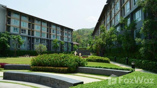Photos 1 of the Communal Garden Area at Dcondo Campus Resort Chiang-Mai